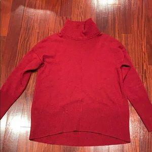 Autumn cashmere dark red turtleneck